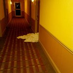Dirty laundry left there in hallway all day and night