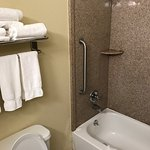 Photo de Holiday Inn Express Hotel & Suites Philadelphia-Choctaw