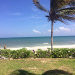 View from our ceviche restaurant (patio)