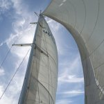 The sails on our Afternoon Sail.