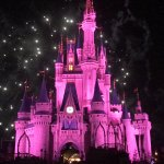 Photo de Happily Ever After Fireworks