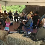 The fiddlers at Borges Ranch Day, May 2017, kept everyone's toes tapping.