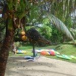 Photo de Benjor Beach Club