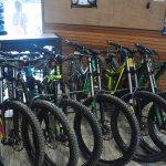 Skyline Rotorua Hire Bikes
