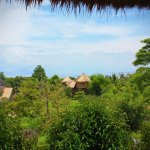 Tree Top Bungalows Foto