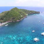 Ảnh về Apo Island Marine Reserve