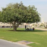 Relaxing Place in Aspire Park