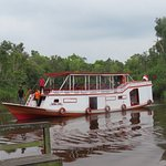 jungle river transport - excellent crew