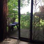 Tree House views