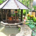 Gorgeous gazebo's to eat in surrounded by ponds near the pool