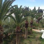 Foto de Dessole Le Hammamet Resort
