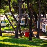 Photo de Camping Arena Stoja