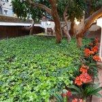 Photo of Petit Palace Boqueria Garden