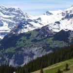 Foto di Jungfrau