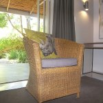 Swellendam Country Lodge Photo