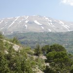 snow capped mountains in lebanon surrounding the cedar reserve