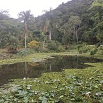 Rancho da Ferradura Foto