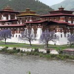 DZONG IN ONE PIECE