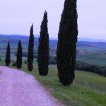 Photo de Agriturismo Cacciamici