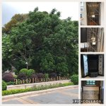 Photo of Tai O Heritage Hotel