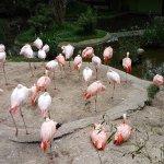 Photo of Zoo Salzburg