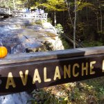 Avalanche Falls at Flume Gorge
