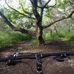 Una foto de nuestra ruta de ciclismo #ElmiradorMTB