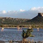 Foto de Shete Boka National Park
