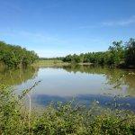 lago per avvistamento uccelli
