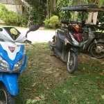Available scooters for rent (200 THB/1 day + gas)