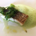 Sea Bass with celery mousse