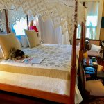 The Azalea room in the main house provides guest with a king size bed option.