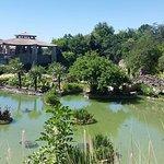 Photo de Japanese Tea Gardens