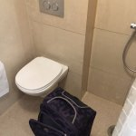 Shower stall same level as toilet (carryon luggage)