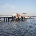 Photo of Domina Coral Bay Aquamarine Hotel