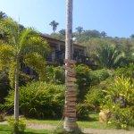 Mar de Jade Retreats Wellness Vacation Picture
