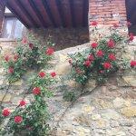 Foto de Montelucci Country Resort & Agriturismo di Charme