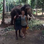 Kavari the elephant and his mahout