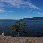 Shore Point Trail