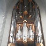 The musical organ