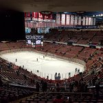 Photo of Joe Louis Arena