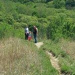 trails, trails, trails