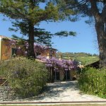 Photo of Agriturismo Villa Vittoria