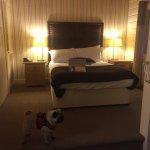 Woodland lodge room