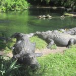 Photo de Busch Gardens