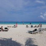Vista de la playa desde las reposeras exclusivas del hotel bajo las palmeras.