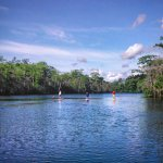 There isn't a more serene place in all of Horry County; The Waccamaw National Wildlife Refuge.