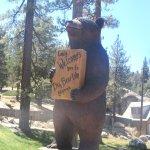 San Bernardino National Forest (Big Bear Lake Area), Ca