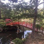 Beautiful garden.  Also, your kids can get a bag full of fish food for 100 yen.