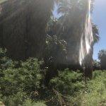 Foto di Coachella Valley Preserve